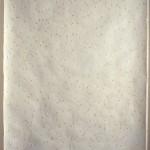 14. L'Herbier illimité, série de l'asclépiade, Tapisserie de graines & aigrettes
